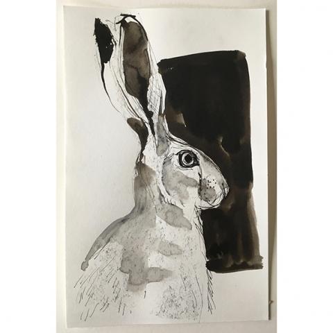 hare study