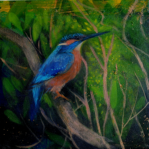 Kingfisher: painting